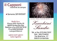 Capponi - Zucchini